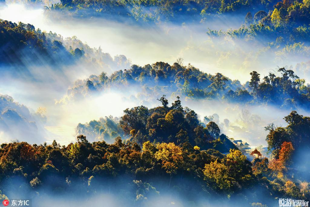 西双版纳勐海,清晨浓雾萦绕的小山村仿佛是人间仙境。雨林深处有人家。