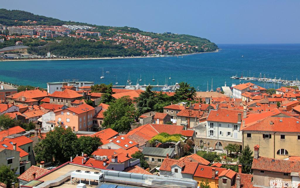 斯洛文尼亚——惊艳的欧洲绿宝石若要为这个富裕的欧洲小国选一种代表颜色,一定会是绿色。因为斯洛文尼亚...