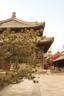 后院属于相对比较私密的客房区域,原来寺庙的正殿如今被用作了展厅或大宴会厅。
