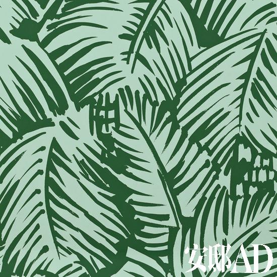 棕榈叶热带风情壁纸