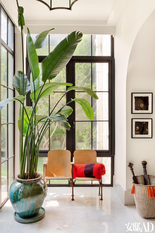 起居室内朝花园的一面阳光充足,联排木椅来自旧时的电影院。