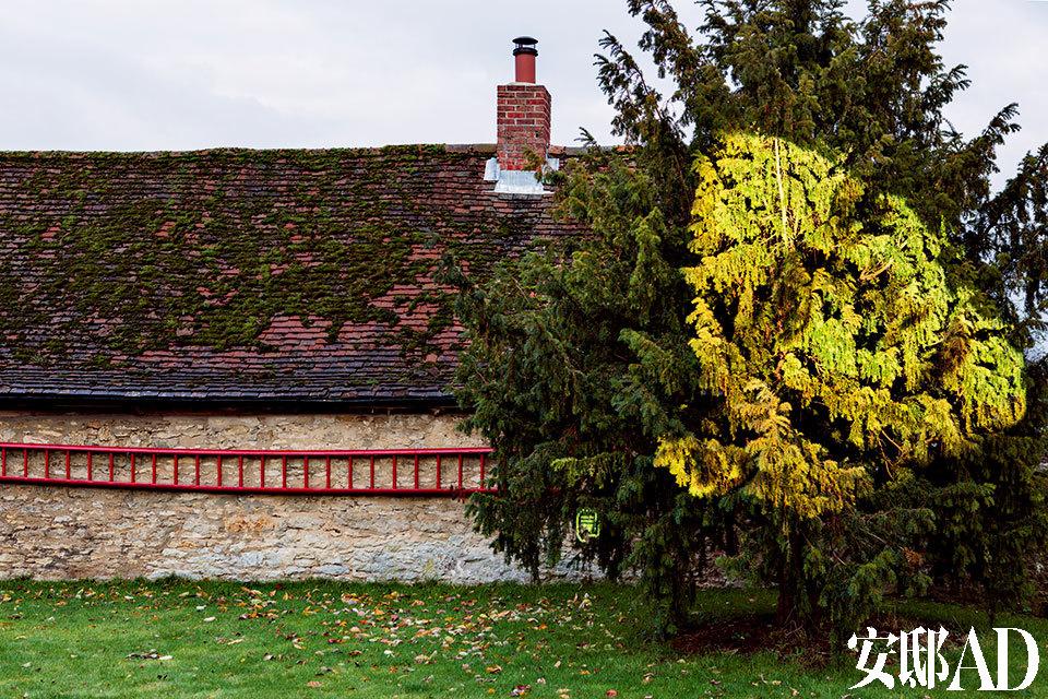 花园中,一座美国艺术家Tony Oursler设计的视频装置非常引人注目,行人只要一穿过连接投影仪的运动传感器,主屋旁的一棵树上就会出现他(她)的影像。