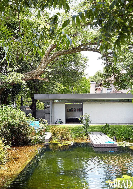 游泳池是一个生态水池,由Wetland Pools(wetlandpools.co.za)的Anthony Philbrick设计,意在让它也自然成为花园的一部分。从草地上有倾斜的砾石滩通往水池,起到承接的作用。
