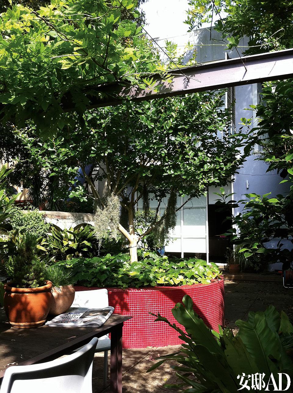 树荫之下的花园有着充分的休闲空间,红色马赛克瓷砖装饰的高身花槽中种着紫薇花。