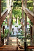 """""""不管什么样的生活方式,一定要了解自己,安分守己,平和地生活在属于自己的范围里,这是一种心境。如果它的形式是美的,我想这就是艺术。""""室外的池塘,屋顶的泳池,包括水幕墙和养鱼池,都在统一的水循环里,好似一个自然生态系统。"""