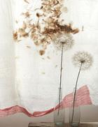 织物的细节:细羊毛窗帘衬着两个可循环吹制的玻璃花瓶,蒲公英花球与窗帘上的图案完美接合。