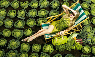 素食主义 Going Green