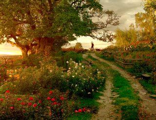 想赏春又不愿人挤人,把春光锁在自家庭院!
