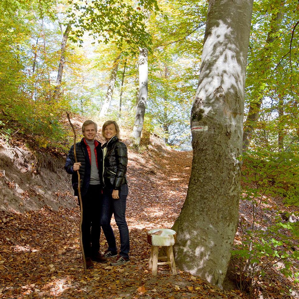 在森林木屋里过年,每一块老木头都美成艺术品!