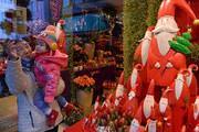 当地时间2016年12月3日,德国慕尼黑,一家花店的圣诞橱窗。