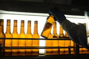 """科學破除""""啤酒肚""""謠言適量飲用啤酒為健康加分"""