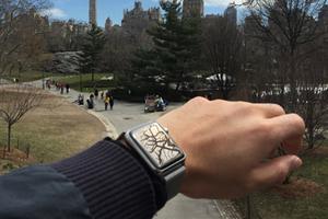 戴一周Apple Watch是什么感觉?