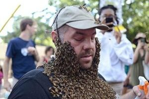 密集恐惧症慎入!蜜蜂胡子爬上身