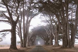 旅拍北半球宁静风光 远离喧嚣来一场放空自我的旅行