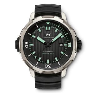 IWC万国海洋时计2000自动腕表