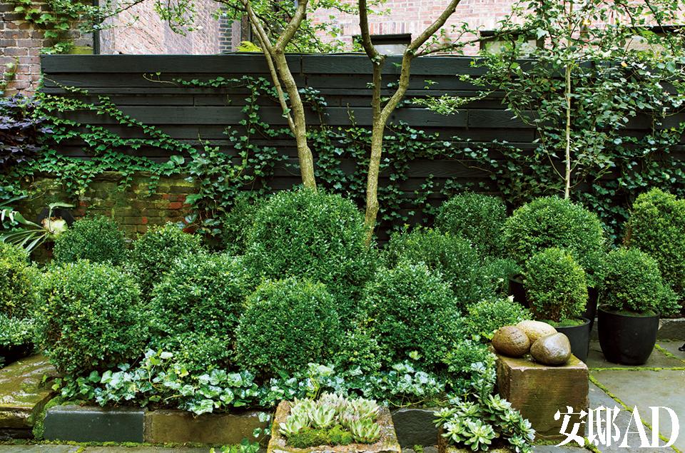 朱丽安·摩尔的宁静花园