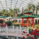 新年賞花好去處,新加坡濱海灣花園邀你共赴新春花卉展