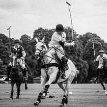 英国马球日 在英伦感受最时髦的贵族运动