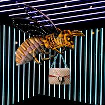 古驰全新橱窗陈列 展示创作总监Alessandro Michele 2015秋冬新品