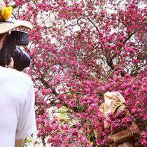 超模 Karlie Kloss 化身镜中花仙MARALLA2015秋冬大片
