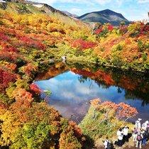入秋了!遍赏世界各地看最美秋色