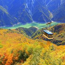 上帝視角去看最美秋天 邂逅一場色彩的盛宴-旅行度假