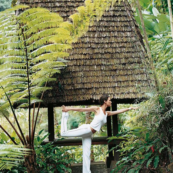 一探瑜珈究竟