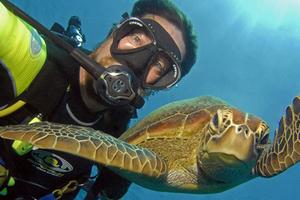 海底动物搞笑自拍合影暴红网络